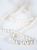 Pearl necklace. Against white background Stock Image