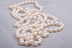 Pearl necklace. Against a silvery organza Stock Images
