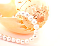 Pearl necklace. Is the perfect accessory for women Stock Photos