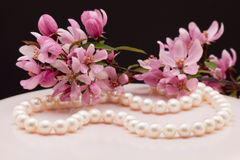 Free Pearl Necklace Stock Images - 40011434