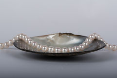 Pearl necklace. In a big oyster Stock Photo