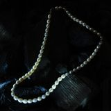 Pearl necklace on black carbon Stock Image