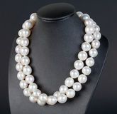Pearl Necklace. On black display Royalty Free Stock Photography
