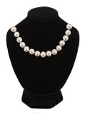 Pearl necklace on black mannequin Stock Photos