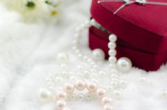Pearl necklace and bracelet Stock Photos
