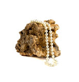 Pearl necklace on coral. On a white background Stock Images