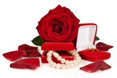 Pearl necklace and earrings in a red gift box with a rose and petals Stock Image
