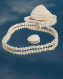 Pearl necklace in figure 8 with seashells Royalty Free Stock Image