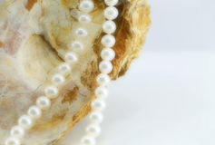 Pearl necklace, upon a fossil oyster shell. A composition with a pearl necklace, upon a fossil oyster shell, detail, landscape cut Stock Photos
