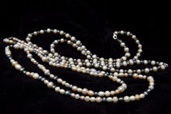 Pearl necklace isolated on black background Royalty Free Stock Photos