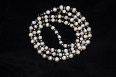 Pearl necklace isolated on black background Royalty Free Stock Photography