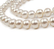 Pearl necklace isolated on the white background Royalty Free Stock Image