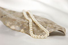Pearl necklace on leaf Royalty Free Stock Photos