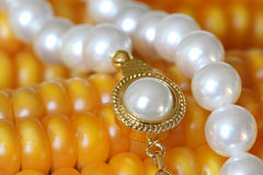 Pearl Necklace On Maize Corn. Jewelry and Food Series: Pearl Necklace On Maize Corn Royalty Free Stock Image