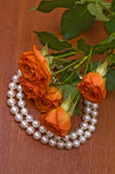 Pearl necklace and red roses. Elegant pearl neclace and beautiful roses Royalty Free Stock Image
