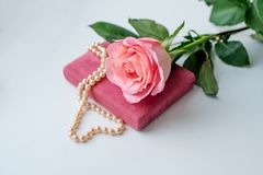 Pearl necklace on rose velvet box and pink one rose. Light background royalty free stock photography