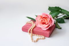 Pearl necklace on rose velvet box and pink one rose. Light background royalty free stock image