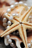 Pearl necklace and seafish Royalty Free Stock Photo