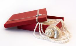 Pearl Necklace and Seashell. Pearl Necklace as a Gift out of Red Box Royalty Free Stock Image