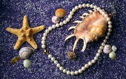 Pearl necklace with seashell and starfishes. On lilac sand Stock Photography
