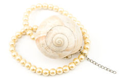 Pearl necklace with spiral seashell Royalty Free Stock Photo