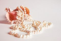 Pearl necklace and seashells Stock Photo
