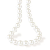 PEARL NECKLACE vector Royalty Free Stock Photo
