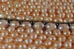 Pearl necklaces Royalty Free Stock Photography