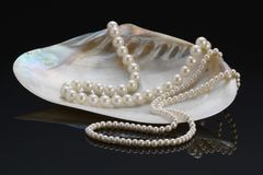 Pearl necklace. Two pearl necklaces in a Mother of Pearl shell on a black background Stock Photos