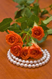 Pearl neclace and red roses Royalty Free Stock Photo