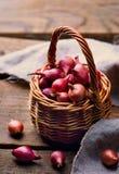 Pearl onion Royalty Free Stock Photo