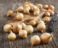 Pearl onions on a wooden cooking board Royalty Free Stock Image
