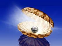 Pearl in open seashells stock illustration