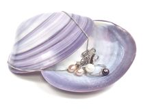 Pearl platinum jewelry Royalty Free Stock Image