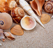 Pearl and sand Royalty Free Stock Image