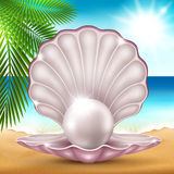 Pearl on the sand. Vector illustration of a pearl on the beautiful sea coast vector illustration