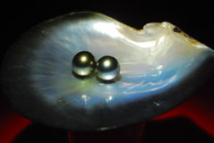 Pearl on a shell Stock Photo