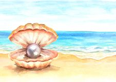 Pearl in the shell on the Summer tropical beach with golden sand. Hand drawn horizontal watercolor illustration. Pearl in the shell on the Summer tropical beach Stock Photo