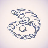 Pearl in shell. Vector drawing Royalty Free Stock Image