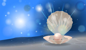 Pearl shell. Vector shiny pearl in the shell with place for your text, eps10 file, gradient mesh and transparency used Stock Photo