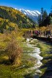 Pearl Shoal Waterfall jiuzhaigou scenic in Sichuan, China Stock Photography