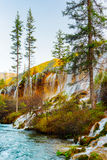 The Pearl Shoals Waterfall with crystal clear water among trees Stock Photography