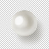 Pearl on transparent background. Vector illustration of shiny natural white sea pearl with light effects on transparent background vector illustration