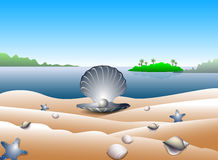Pearl on tropical beach. Illustration of an open shellfish with a pearl inside, sitting on a shell strewn tropical beach Royalty Free Stock Photo