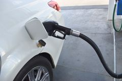 Pearl white auto pumping gasoline from a gas pump Royalty Free Stock Photo