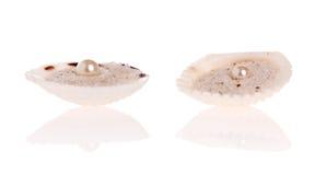 pearls белизна Стоковое Изображение RF