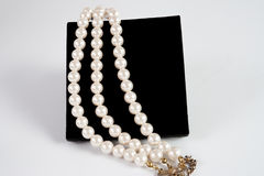 Pearls, royalty free stock photography
