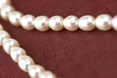 Pearls. In close up Royalty Free Stock Photo