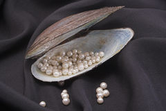 Pearls. A shell holding pearls on black silk Royalty Free Stock Photo