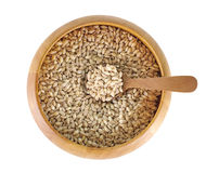 Pearls barley grain seed on background Stock Photography